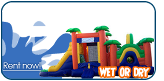 bounce house slide combo rentals houston texas
