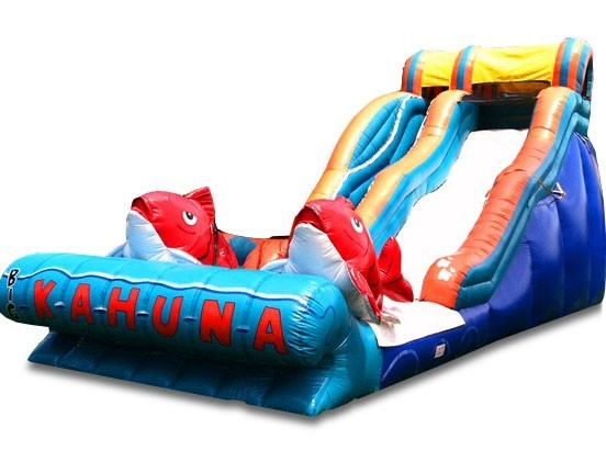 (B) 18ft Big Kahuna Wet/Dry Slide