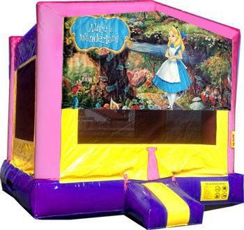 (C) Alice in Wonderland Princess Moonwalk