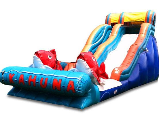 (B) 19ft Big Kahuna Wet/Dry Slide