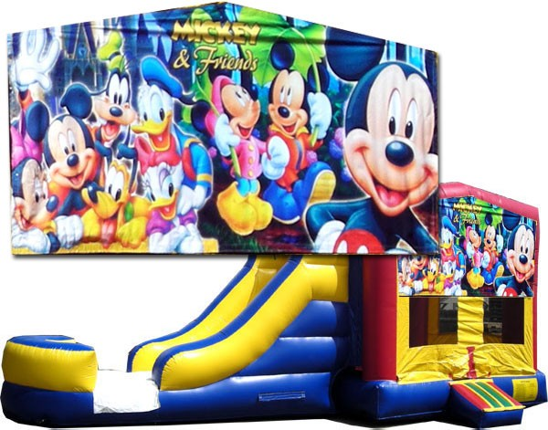 (C) Mickey & Friends 2 Lane combo (Wet or Dry)
