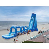 (D) 42ft Dual Lane Blue Crush Water Slide